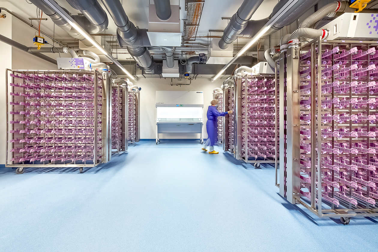 Projekt CP Bauteam GmbH
